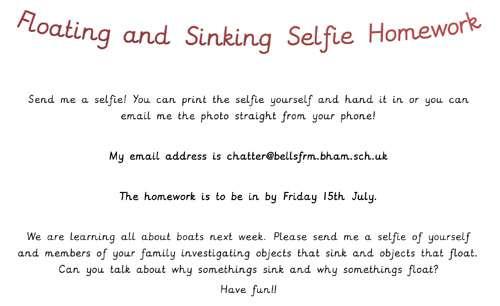 Floating and Sinking Selfie Homework